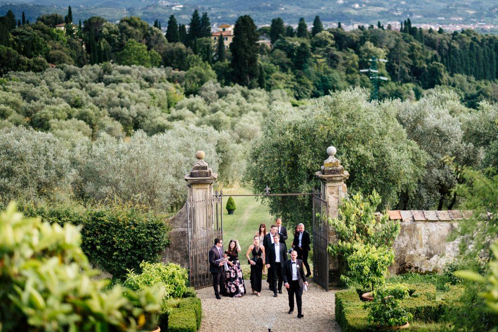 Villa di Maiano olive groves